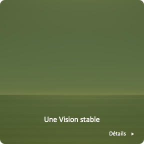 Une Vision stable